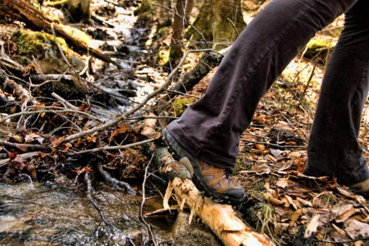 Hiking at Deep Creek Lake