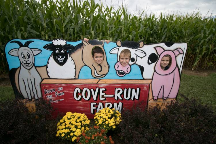 Corn Maze with kids art Deep Creek Lake