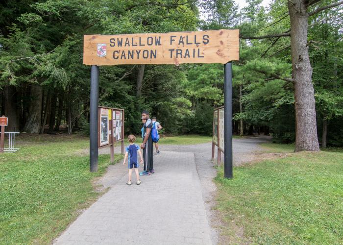 Hiking trail at Swallow Falls State Park