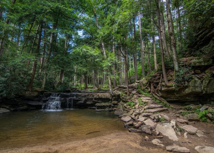Small Waterfall at Swallow Falls State Park